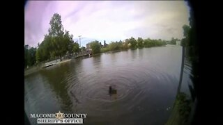Video shows Macomb County deputies rescuing suspect who jumped in river to avoid capture