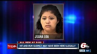 Woman suspected of hitting an Indy teacher and then trying to flee the scene is in the US illegally - Video