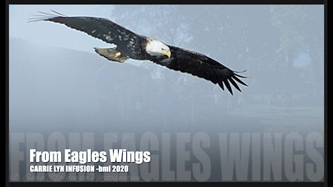 FROM EAGLES WINGS