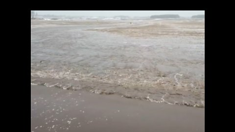 Melting Snow Leads to Flooding on Wisconsin Farmland