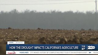 Keith Gardiner discusses drought impacts on agriculture industry