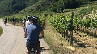 Biking through Vienna's wine country - Video