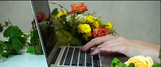 Plants can help reduce workplace stress