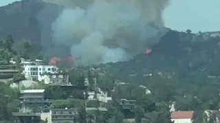 Brush Fire Rages at Griffith Park in Los Angeles - Video