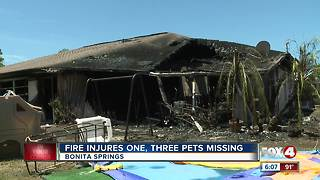 Fire injures one, leaves three pets missing - Video