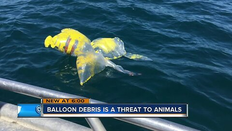 Master's student, others try to curb balloon debris in the Great Lakes, elsewhere