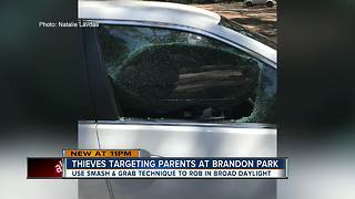 Smash-and-grab thieves target parents at local park - Video