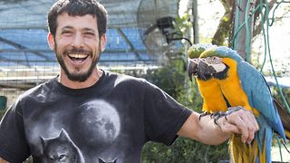 It's vetting hot in here – Hunky animal rescuer cuddles saved creatures - Video