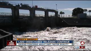 Fort Myers Beach businesses concerned over continued Lake O releases