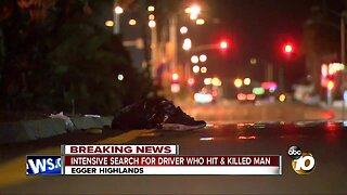 Man killed in hit-and-run in South Bay