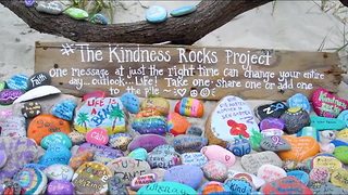 "These ""Kindness Rocks"" Are Starting A Happiness Movement! - Video"