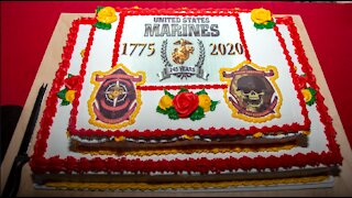 Marine Corps 245th Birthday & Veterans day Tribute Video