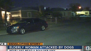 91-year-old hospitalized after attacked by dogs in Henderson - Video