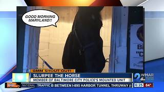 Good morning from Slurpee with the Baltimore City Police Mounted Unit! - Video