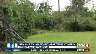 Bones discovered in wooded Naples area - Video