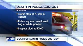 Suspect dies in custody