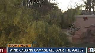 Wind causes damage around Las Vegas valley Friday - Video