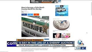 Be a Palm Beach County sheriff for the day - Video