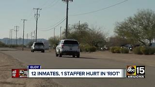 12 inmates and one staffer hurt in prison riot in Eloy