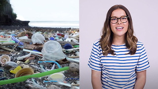 Plastic Pollution is Causing Problems in Our Oceans - Video