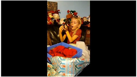 Little girl surprised with Chihuahua puppy for Christmas