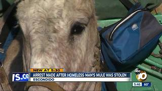 Suspected thieves steal what little a homeless man has - Video