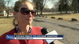 Menomonee Falls residents react to recent cougar sighting - Video