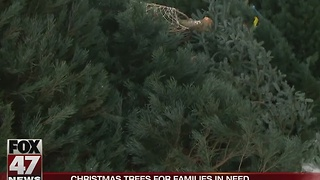 Lansing Gardens to donate 100 Christmas trees - Video