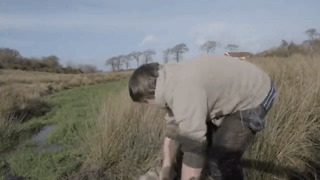 Trapped Sheep Gets Rescued From a Bog in Scotland - Video