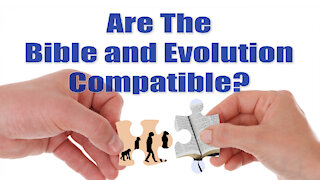 Are The Bible and Evolution Compatible?