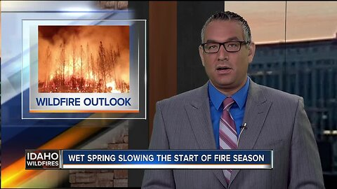 Delayed fire season after wet spring