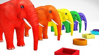 Learn Color Animals Elephant & Learn Shapes W Cartoon Nursery Rhymes Song for Kids