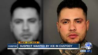Undocumented hit-and-run suspect wanted by ICE now in federal custody - Video