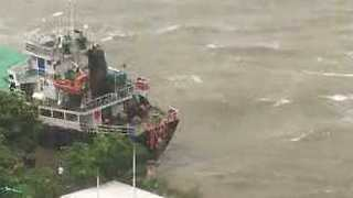 Crew Abandons Ship in Hong Kong's Discovery Bay During Typhoon Hato - Video