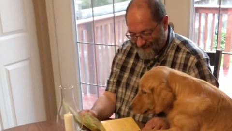 A Musical Father's Day Card is the Perfect Gift in This Pup's Eyes