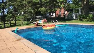 YouTuber pulls off epic somersault into inflatable pool toy - Video