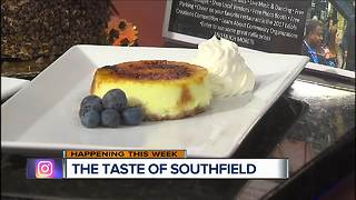 Taste Of Southfield - Video