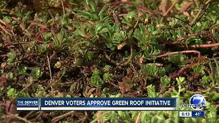 Denver votes to require environment-friendly 'green' roofs - Video