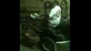 Things Go Bad Very Quickly for Guy Riding Lawnmower - Video