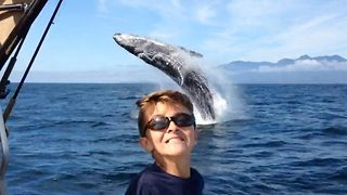 Epic Whale Breach During Father-And-Son Fishing Trip