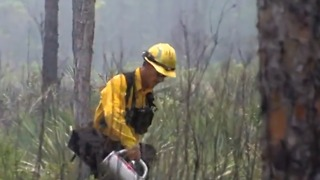 Science behind prescribed burns - Video