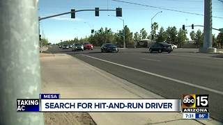 Search continues for Mesa hit-and-run driver - Video