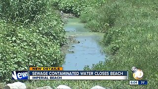 Sewage flowing from Mexico closes Imperial Beach