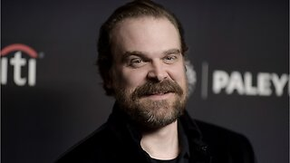 What Role Did David Harbour Take In The Marvel Cinematic Universe?