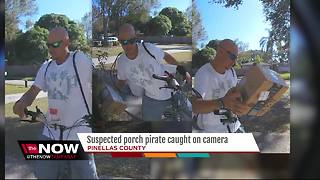 Pinellas Park porch pirate caught on camera stealing Christmas gifts - Video