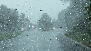 Tropical Storm Causes Heavy Rainfall and Flood Warnings in Florida - Video