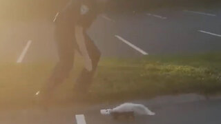 Policeman Saves Skunk And Gets Sprayed