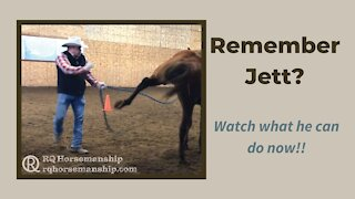Remember Jett? Watch What He Can Do Now!!
