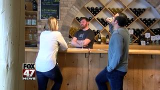 Warm weather brings visitors to Northern Michigan wineries - Video