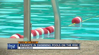 Parasite found in swimming pools on rise